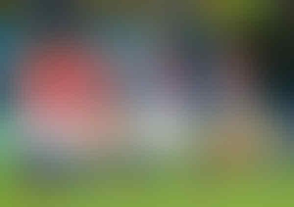 Kekuatan Dan Kelemahan Semifinalis Piala Dunia Menurut Dewakere