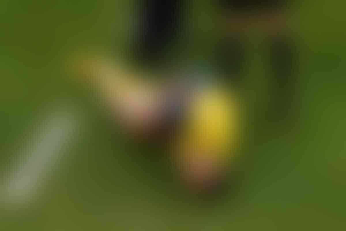 Klub Meksiko Memulai Sebuah Tantangan Bernama 'Neymar Challenge'