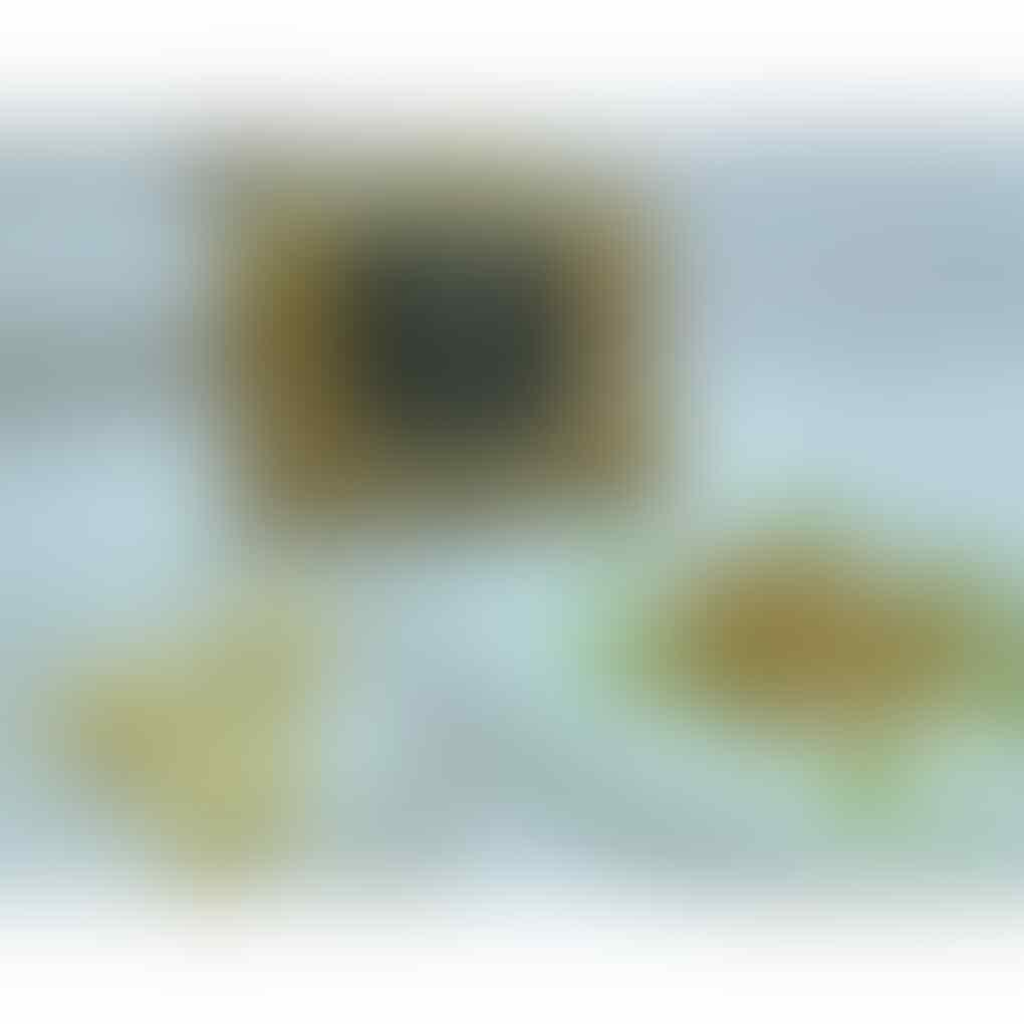 Dicari Reseller/Dropshipper Rengginang Mentah