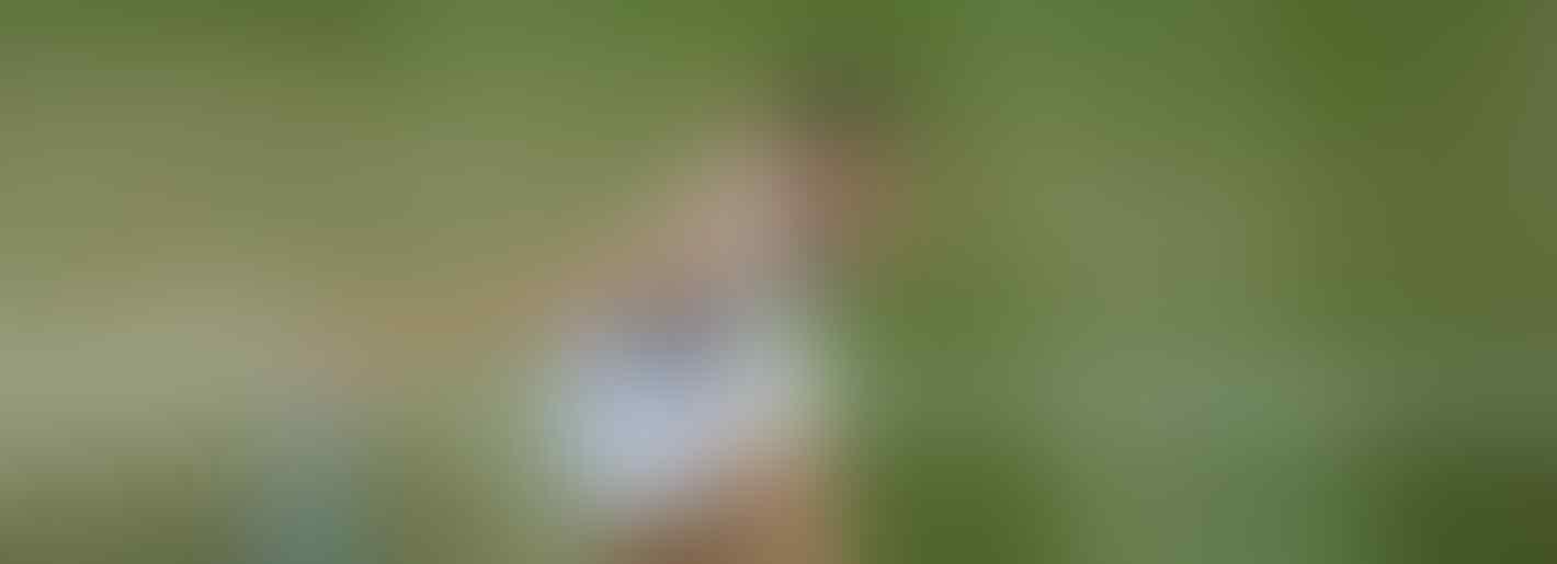 Karolina Pliskova Out, Wimbledon Tanpa Unggulan Top 10 di 8 Besar