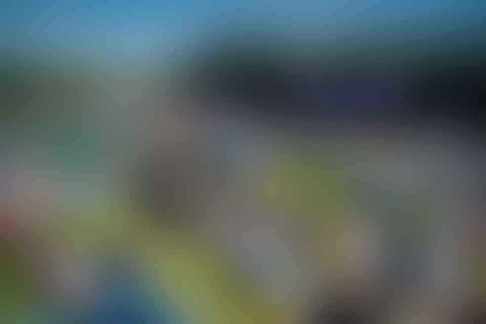 Suporter Inggris Pilih Nonton Mana ya: Wimbledon atau Piala Dunia?