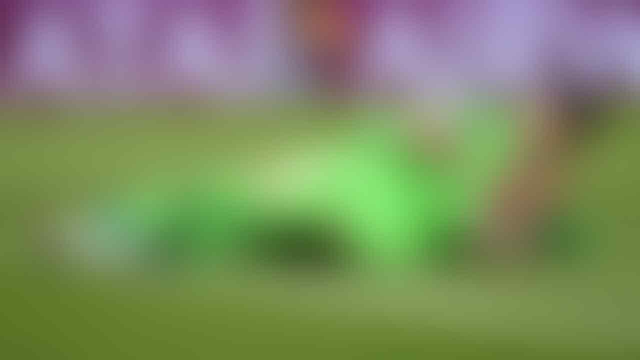 Nih, Rahasia Kiper Memblokir Tendangan Penalti!