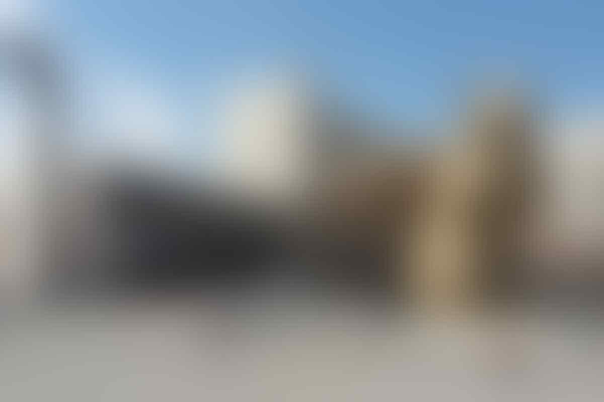Tupai Raksasa 12 Meter Bikin Geger Warga Kazakhtan