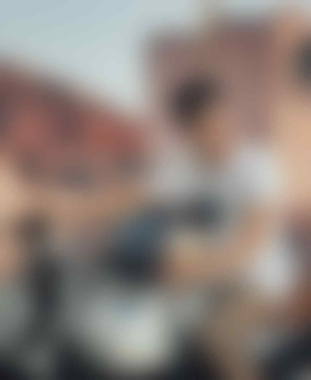Bikin Kangen, Ini 5 Artis yang Pernah Perankan 'Lupus' di Era Lawas