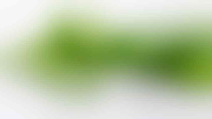 Punya Masalah Rambut Apek? Atasi Saja Dengan 6 Cara Ampuh Ini!