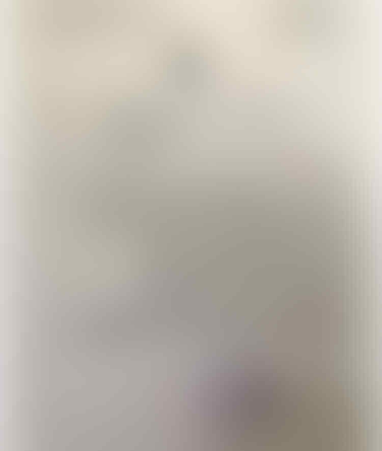 Viral Pemukulan Wanita di Minimarket Babel, AKBP M Yusuf Dicopot