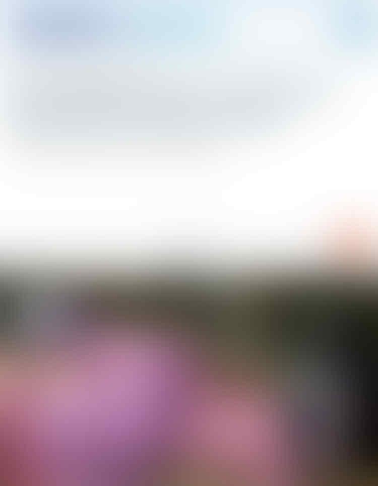 Sandiaga PAKSA Gedung Sedia Lahan PKL demi Asian Games, Luasnya?