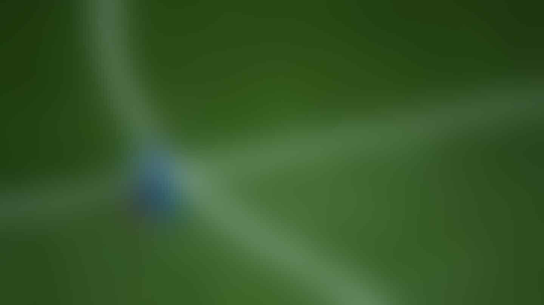 Marco van Basten: Akting Neymar di Lapangan Bikin Tertawa
