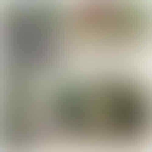 5 Mayat Ditemukan di Aliran Sungai Deli