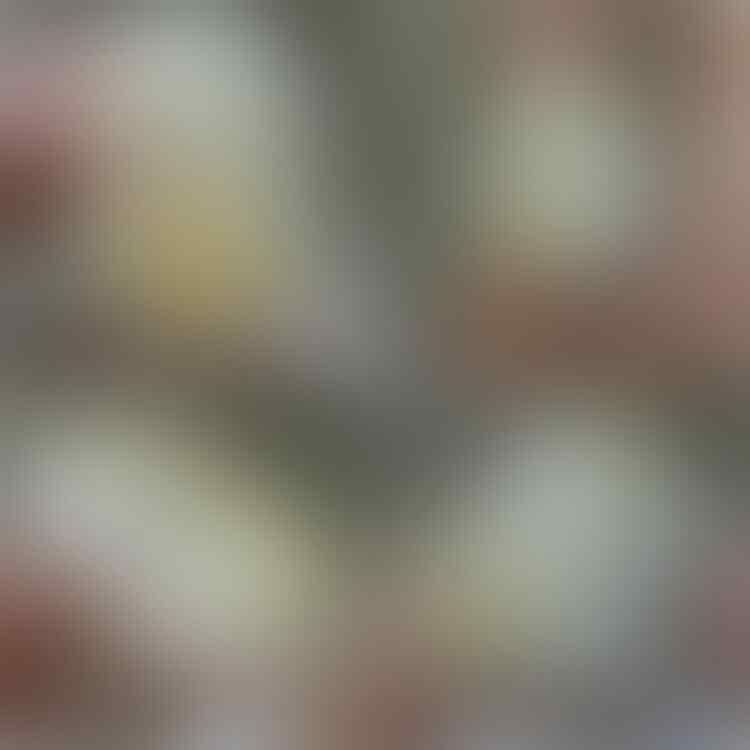 LELANG# 274 SINGKAT AJAH OM, 12pcs CLOSE MALAM INI, SABTU 14/07 @22:12