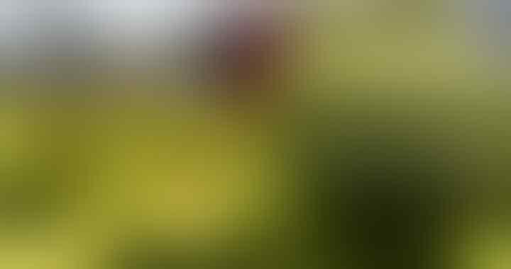 Amankan Stok, Kementerian ESDM Pantau Pasokan LPG 3 kg Hingga ke Sub Penyalur