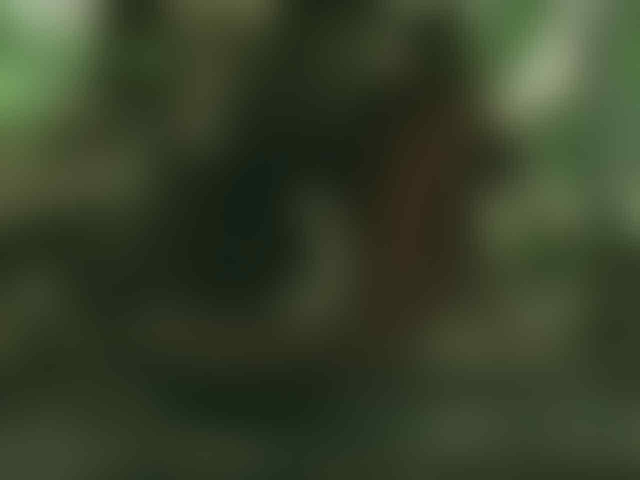 Di Saat Bumi Dipenuhi Serangga2 Raksasa - Part 5: Karboniferus