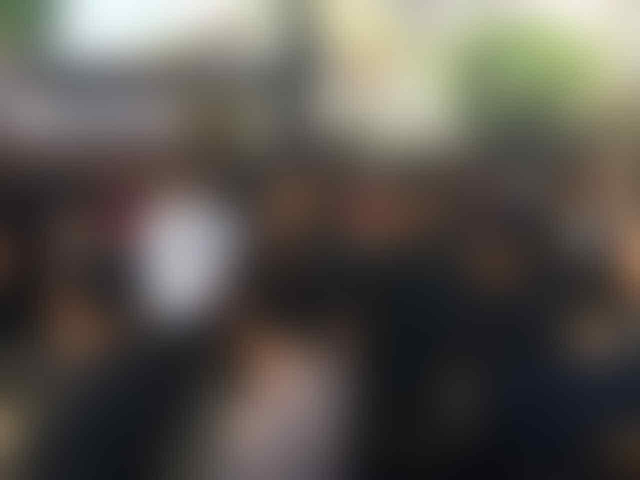 "Tim Pemenangan Jokowi-Ma'ruf Akan Dipimpin oleh Sosok Berinisial ""M"""
