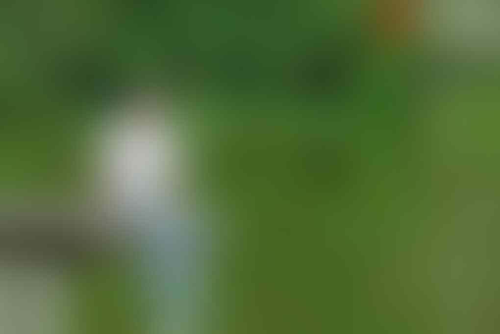 13 Potret Kecantikan Awana Golf Course, Refreshing ala Millenials Hits