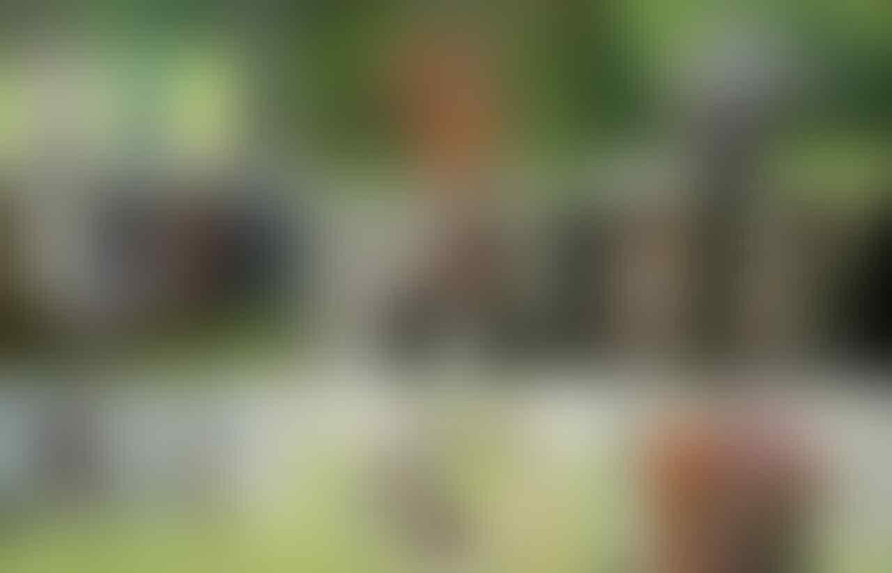 CONFIRMED] (2017-2018) Kamen Rider Build