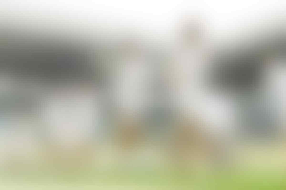 UEFA Nations League: Denmark Vs Wales, Tak Ada Lagi Gangguan