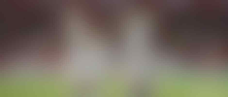 Benzema-Bale, duet terbaik di Liga