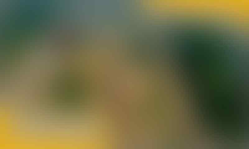 Gak Perlu Kuota, 10 Game Offline Android Ini Dijamin Seru Abis, Guys!