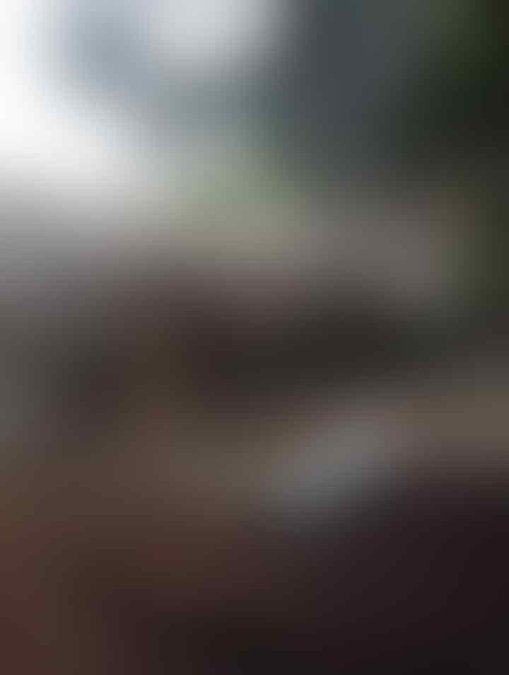 Dituduh Beli Sepatu Curian: Ibu Diarak dan Ditelanjangi, Anaknya Ditonjok