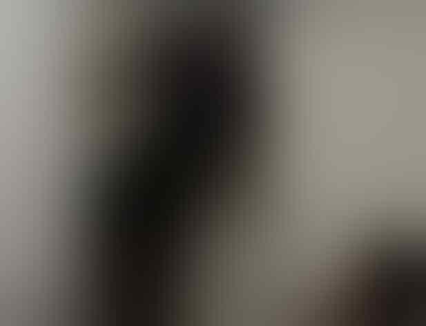 Geger Aksi Ridwan Kamil Memanjat karena Terkunci di Toilet