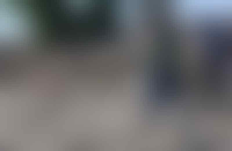 Banyak Hoax Tentang Bencana Sulteng, Jokowi: Itu Biadab, Itu Pengecut!