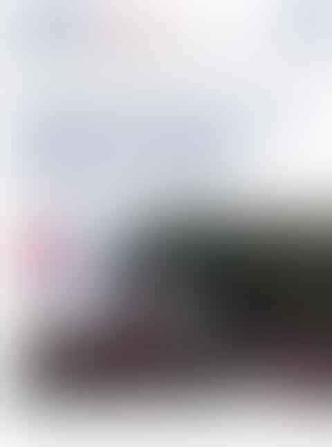 Dianggap Sebarkan Hoax Saat Menyatakan Tak Ada Penjarahan di Palu, Ronald: Tolong Tan