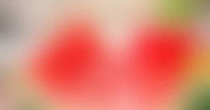 WOW Buah-Buahan Ini Memiliki Warna Merah Lho Gan