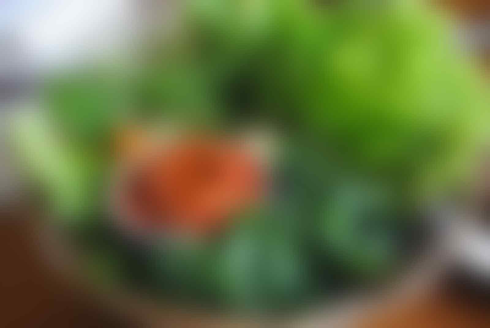 7 Makanan Ini Cocoknya Dengan Sambel Setan, Bikin Kamu Lupa Diet Lho