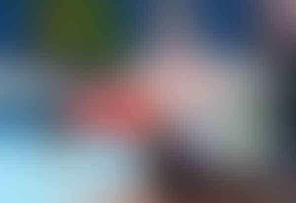 Morteza Mehrzadselakjani, Atlet Voli Duduk Tertinggi di Para Asian Games