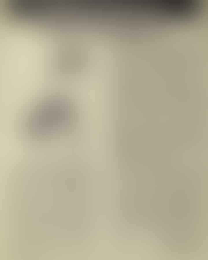 Diperiksa di Polda Metro soal Kasus Ratna Sarumpaet, Amien Rais: Ini Sangat Janggal!