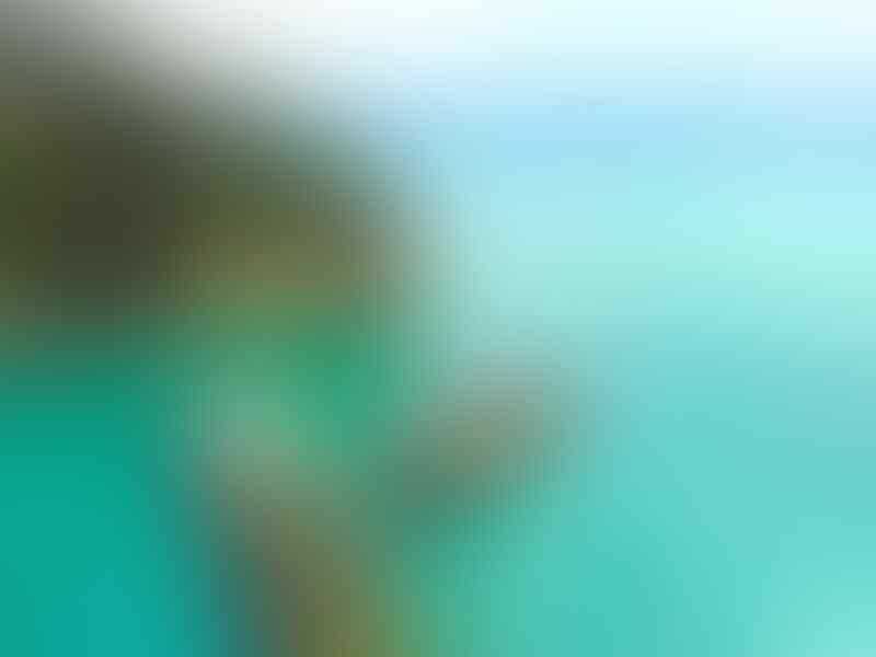 Masih 'Perawan', 5 Pantai Tersembunyi Pacitan Ini Wajib Dikunjungi