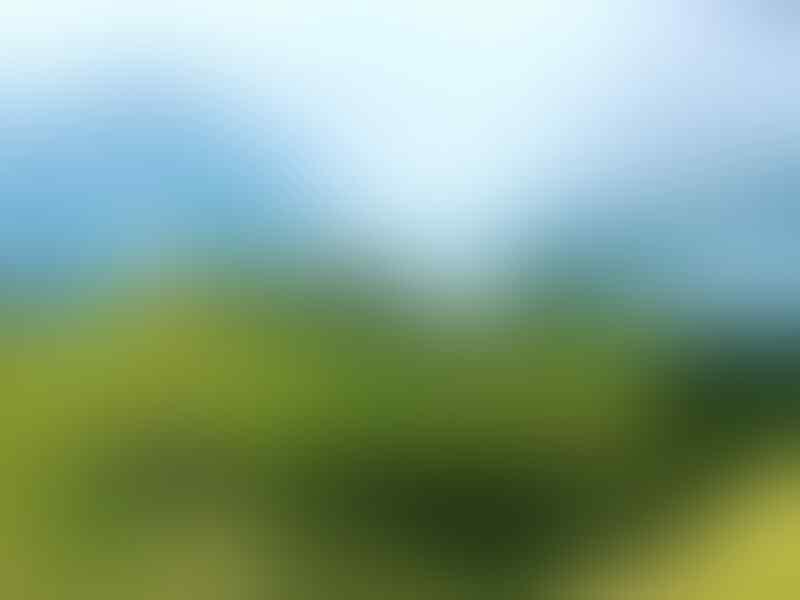 9 Padang Savana Terindah di Jawa Timur Ini Bikin Pengen Segera Liburan