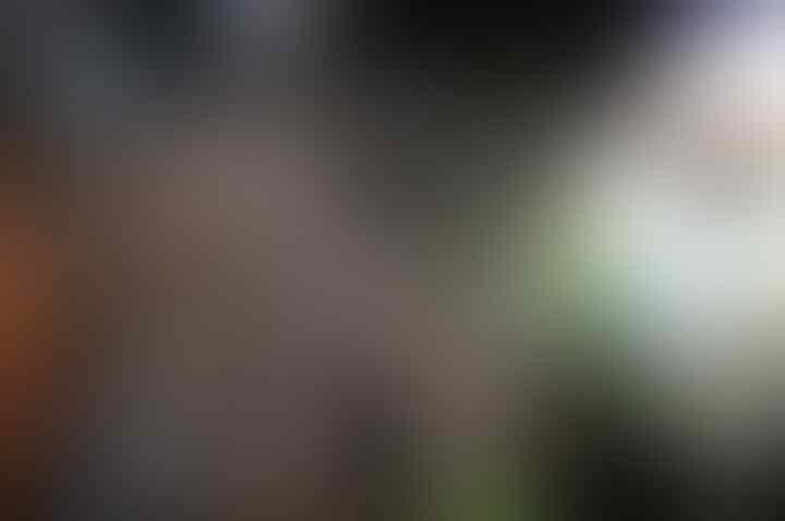 Warga Jakarta Senang Monas Jadi Tempat Tabligh Akbar