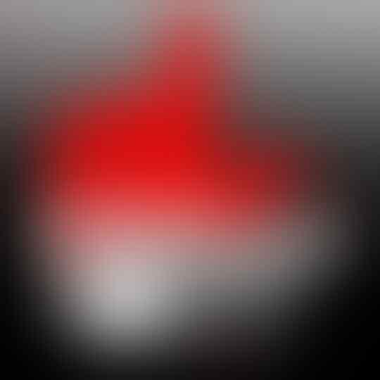 Hoaks: Foto Khabib Nurmagomedov Pegang Kaos #2019GantiPresiden
