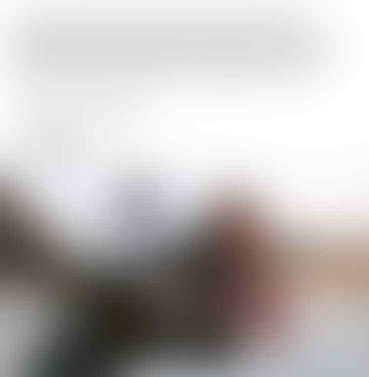 Pemerintah & Seluruh Ormas Islam Sepakat Tak Larang Bendera Tauhid Berkibar ...