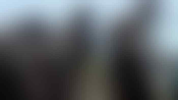 Pulang dari Jerman, Prabowo dan Luhut Panjaitan Bentuk Sat 81 Kopassus