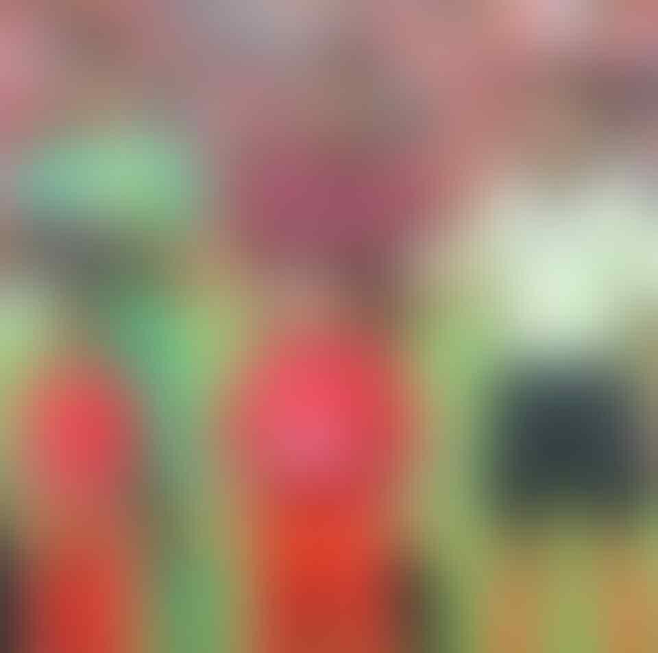 Ini Alasan Kenapa Sepak Bola Indonesia tak Kunjung Maju