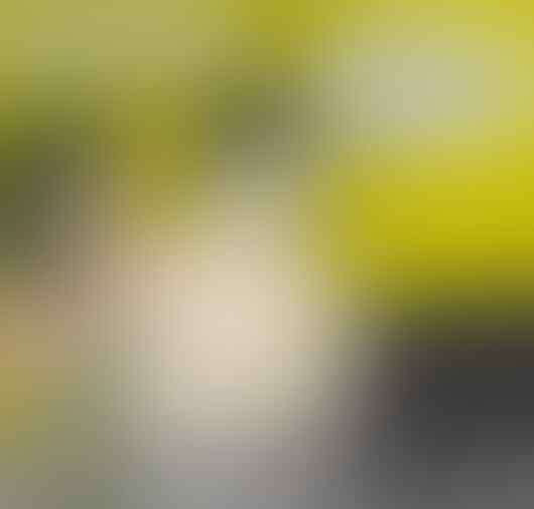 Mahfud MD: Hadir di Reuni 212 Bukan Ukuran Keimanan