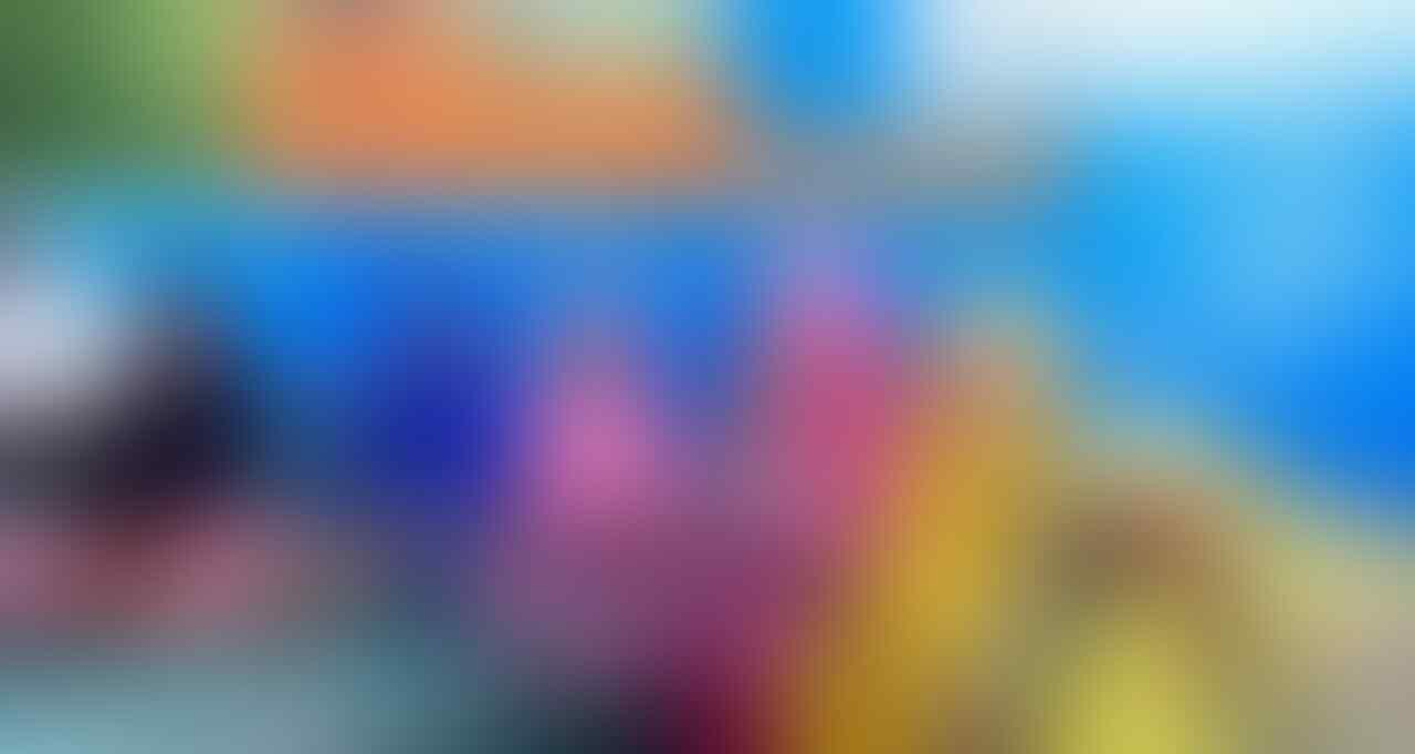 [BAKSOS] 'DOMPET ASIK NL#275 2019