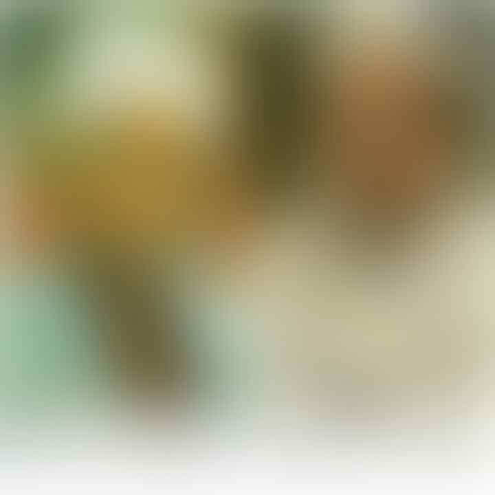 Dahnil Sebut Rizieq Tak Bisa Pulang, Abu Janda: Kunci Portal ada di Firza