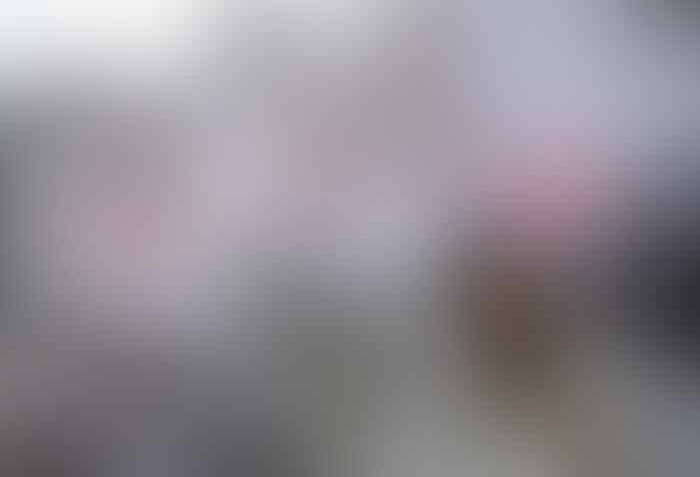 Kesalahan FPI: Terlalu Banyak Peminat hingga Habib Rizieq Ungguli Presiden
