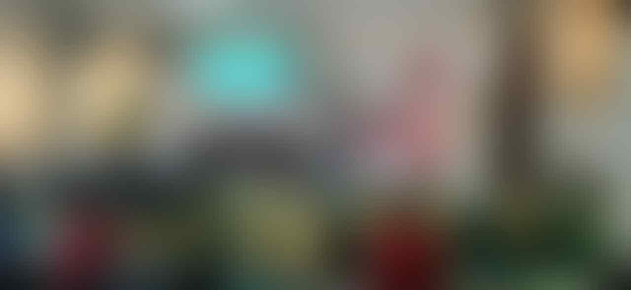 [FR] #BedaBisaBersama Kaskus Reg. Kalbar With Smartfren