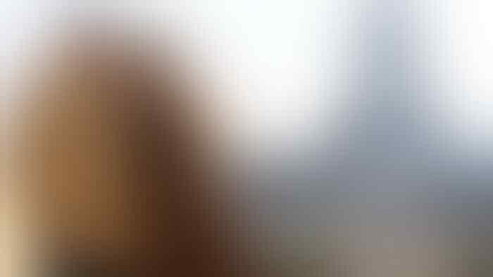 Bisnis Es Doger Gibran Rakabuming Dapat Suntikan Rp 71 Miliar