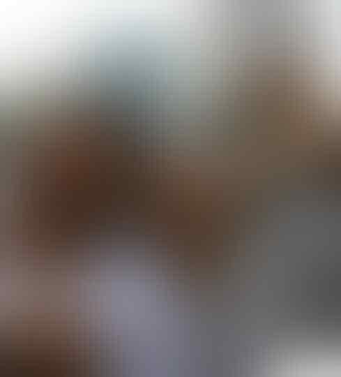 Denny Sregar : Jokowi hrs abaikan korban Asap, mrk Kadal Gurun pencaci saat pilpres