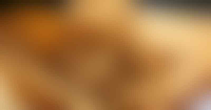 Tempe Kripik Khas Kota Ngawi yang Rasa Kriyuknya Nendang