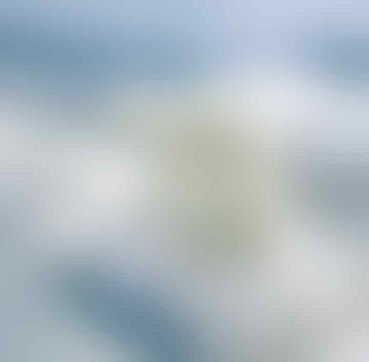 Cekidot gansis, Foto menakjubkan para pemenang Nature Photographer of the Year 20019