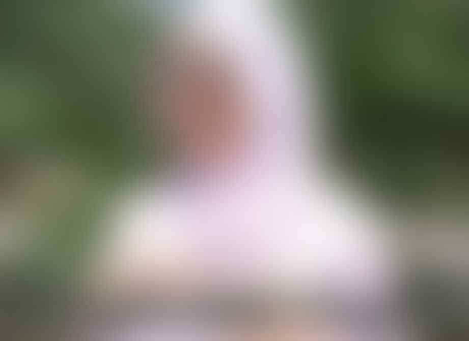 Heboh Ular Kobra, Kenali 7 Jenis Ular Dengan Bisa Paling Mematikan di Dunia ini