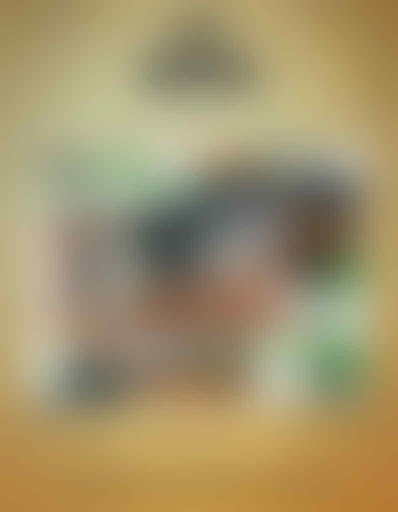 [BAKSOS] DOMPET NL#275 2020