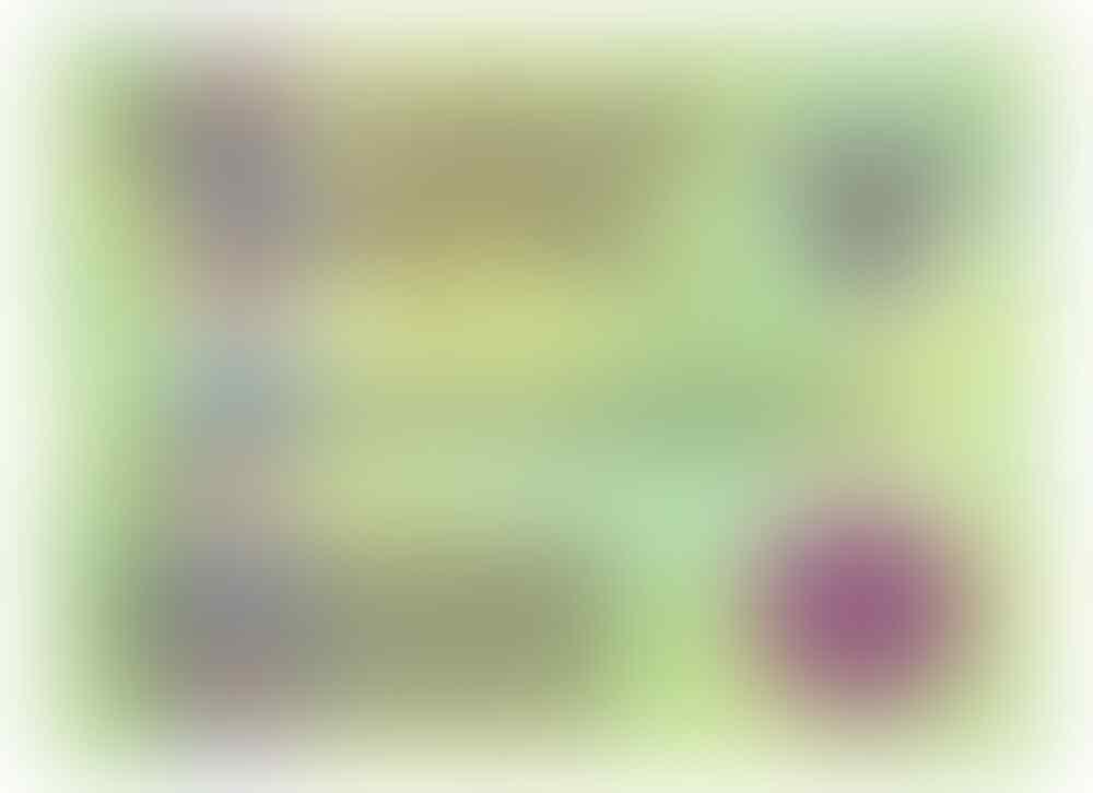Lounge Reg. Banyuwangi Edisi Awal Tahun 2020 - Part 9