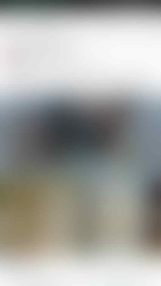 Walikota Risma Disebut Kodok Betina, Netizen Suroboyo Hujat Zikria Dzatil